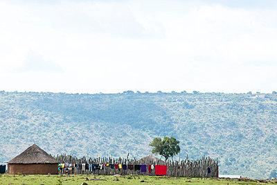 Domestic work in Kenya - p5330375 by Böhm Monika