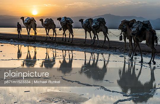p871m1523334 von Michael Runkel