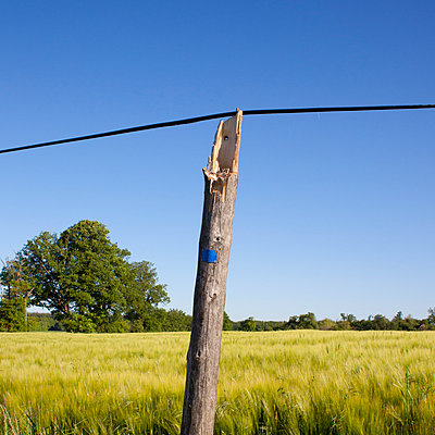 Broken pole, Normandy - p1138m925085 by Stéphanie Foäche