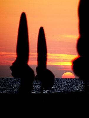 Sonnenschirme - p415m822854 von Tanja Luther