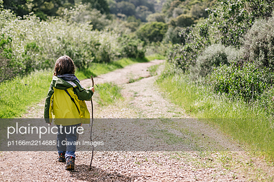 Back view boy walking stick path trail natural park - p1166m2214685 by Cavan Images