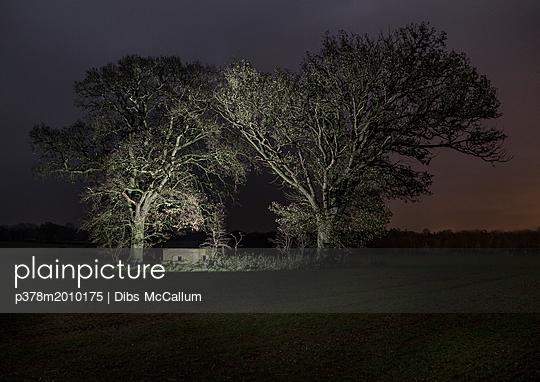 p378m2010175 von Dibs McCallum
