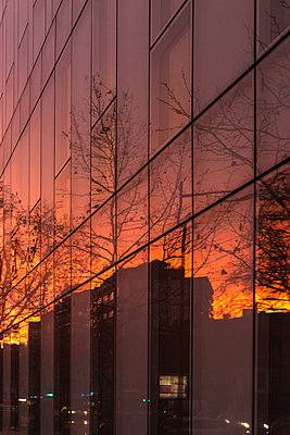 Glass front of high rise at sunset light - p1594m2172430 by Françoise Chadelas