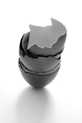 Eggshells  - p450m1115923 by Hanka Steidle