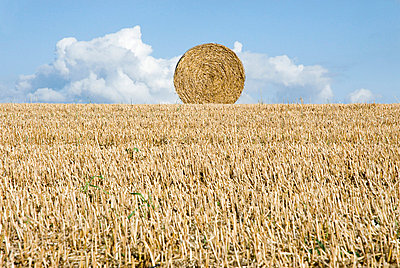 Hay bale - p92410113f by Image Source