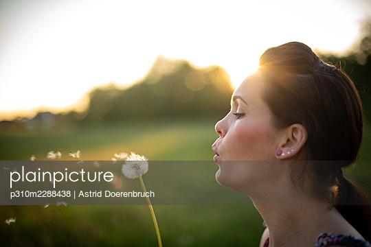 Dandelion - p310m2288438 by Astrid Doerenbruch