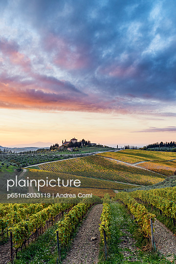 Farmhouse surrounded by vineyards at sunrise. Gaiole in Chianti, Siena province, Tuscany, Italy. - p651m2033119 by Andrea Comi