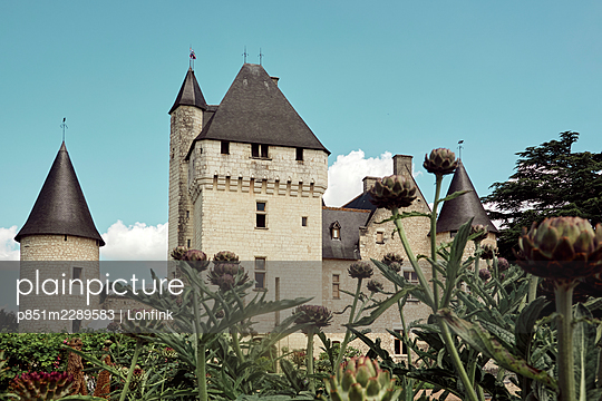 Castle of the Loire Valley, France  - p851m2289583 by Lohfink
