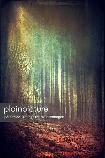 Persons walking in forest at sunlight, alienation - p300m2213717 by Dirk Wüstenhagen