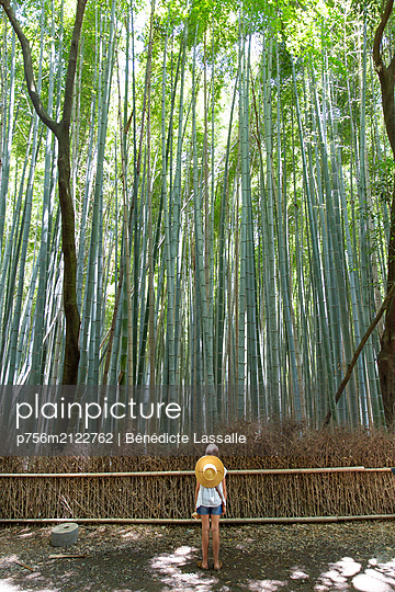 Child marvels at grove with tall trees - p756m2122762 by Bénédicte Lassalle