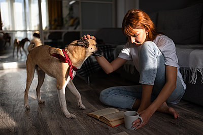 Woman reading book and petting dog - p1166m2234523 by Cavan Images
