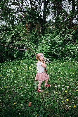 p1238m1452171 by Amanda Voelker