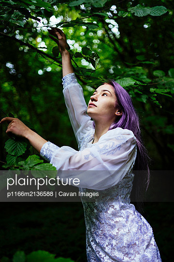 woman reaches for tree branches - p1166m2136588 by Cavan Images