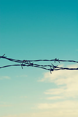 Barbwire against blue sky  - p794m2089182 by Mohamad Itani