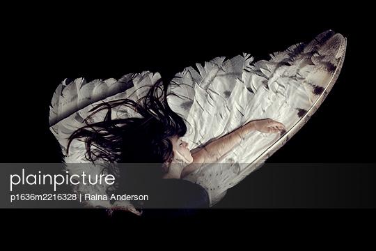 Auf den Schwingen des Schlafes - p1636m2216328 von Raina Anderson
