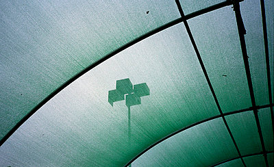 Transparent green ceiling - p567m720908 by Jesse Untracht-Oakner