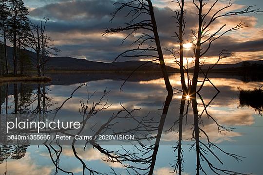 p840m1355665 von Peter  Cairns / 2020VISION