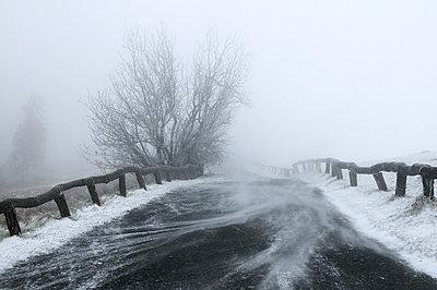 Snowstorm - p470m966281 by Ingrid Michel