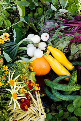 Full frame of fruits and vegetables - p575m1074981f by Lina Karna Kippel