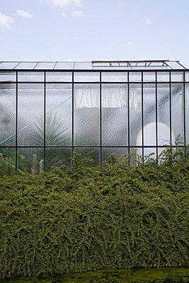 Gewächshaus - p2380256 von Anja Bäcker