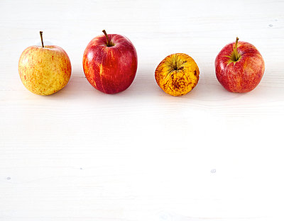 Row of three fresh apples and a shrivelled one on white wood - p300m1081642f by Dieter Schewig