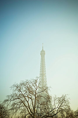 Eiffel Tower in the mist - p445m1452456 by Marie Docher
