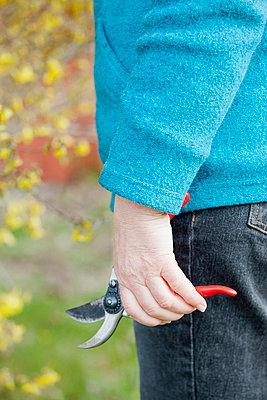 Woman holding garden shears - p956m658550 by Anna Quinn
