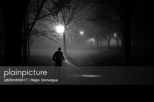 p829m830617 von Régis Domergue