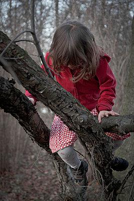Mädchen klettert auf Baum - p212m889940 von Edith M. Balk