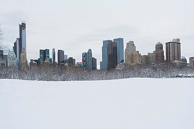 City skyline and snowy urban park - p924m807179f by Ditto