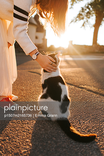 Petting my cat in the sunset - p1507m2165736 by Emma Grann