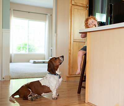 Toddler boy sits at counter eating ice cream as dog watches on floor - p1166m2146789 by Cavan Images