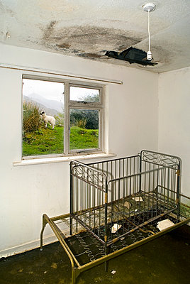 Room And Window View in Abandoned House  - p1562m2211281 by chinch gryniewicz