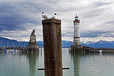 Hafenansicht Lindau am Bodensee mit Alpenpanorama - p177m1465953 von Kirsten Nijhof