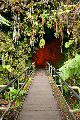 USA, Hawaii, Big Island, Volcanoes National Park, entrance of Nahuku, Thurston Lava Tube - p300m998601f by Biederbick&Rumpf