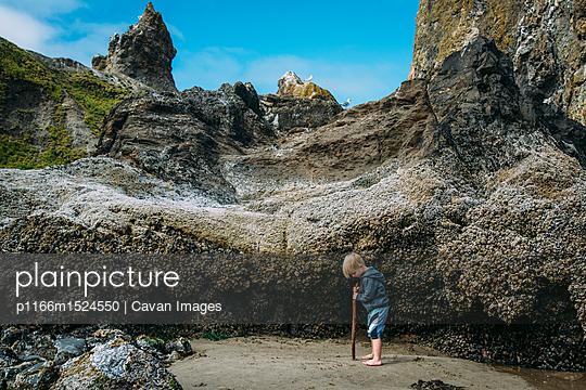 p1166m1524550 von Cavan Images