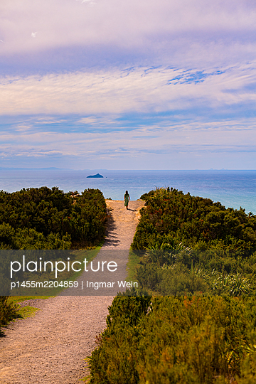 Woman on hiking path overlooking the sea, New Zealand - p1455m2204859 by Ingmar Wein