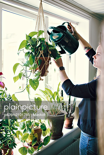 Woman watering plant hanging from window at home - p426m2101765 by Maskot