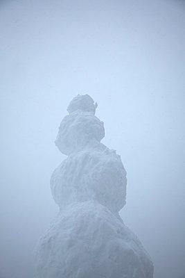 Snow sculpture - p522m987571 by Pauline Ruhl Saur