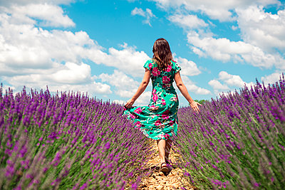 France, Provence, Valensole plateau, back view of woman walking among lavender fields in summer - p300m2070369 by Gemma Ferrando
