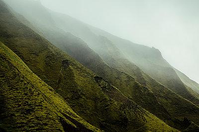 Mossy cliff - p1585m2285319 by Jan Erik Waider