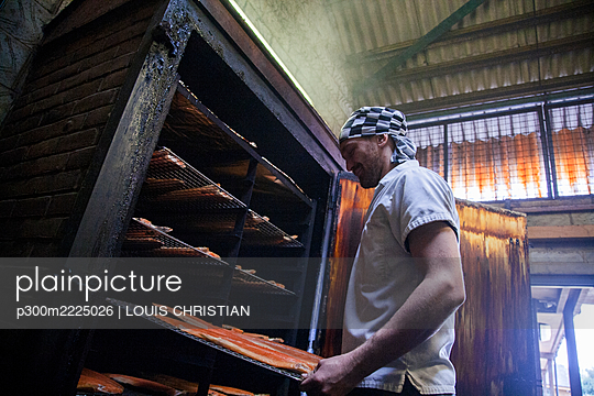 Manual worker inserting fish tray in smokehouse at food factory - p300m2225026 by LOUIS CHRISTIAN