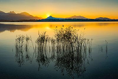 Germany, East Allgaeu, near Fuessen, Lake Hopfensee at sunset - p300m2070603 by Walter G. Allgöwer