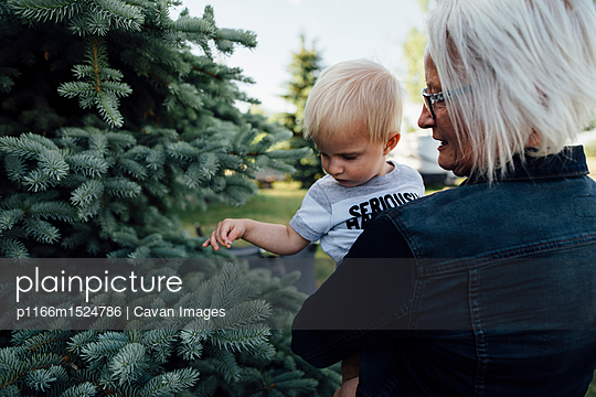 p1166m1524786 von Cavan Images