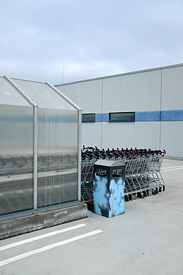 Trolleys at a supermarket - p116m2278712 by Gianna Schade
