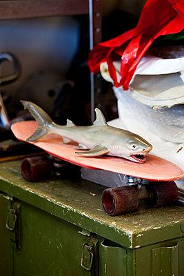 Hai auf Skateboard  - p1195m1195455 von Kathrin Brunnhofer