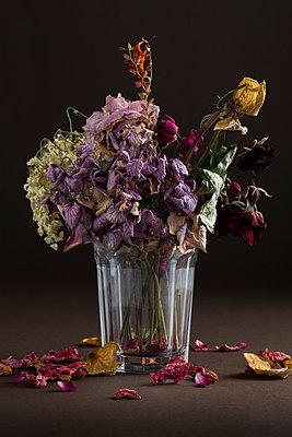 Vertrockneter Blumenstrauss - p666m948665 von Sennaa