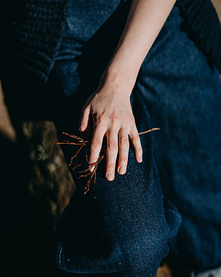 Woman's hand holding branch - p1184m1462620 by brabanski