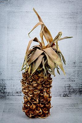 Rotten pineapple - p451m2278310 by Anja Weber-Decker
