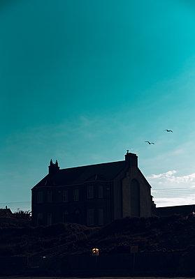 Ireland, Detached house - p1681m2283689 by Juan Alfonso Solis